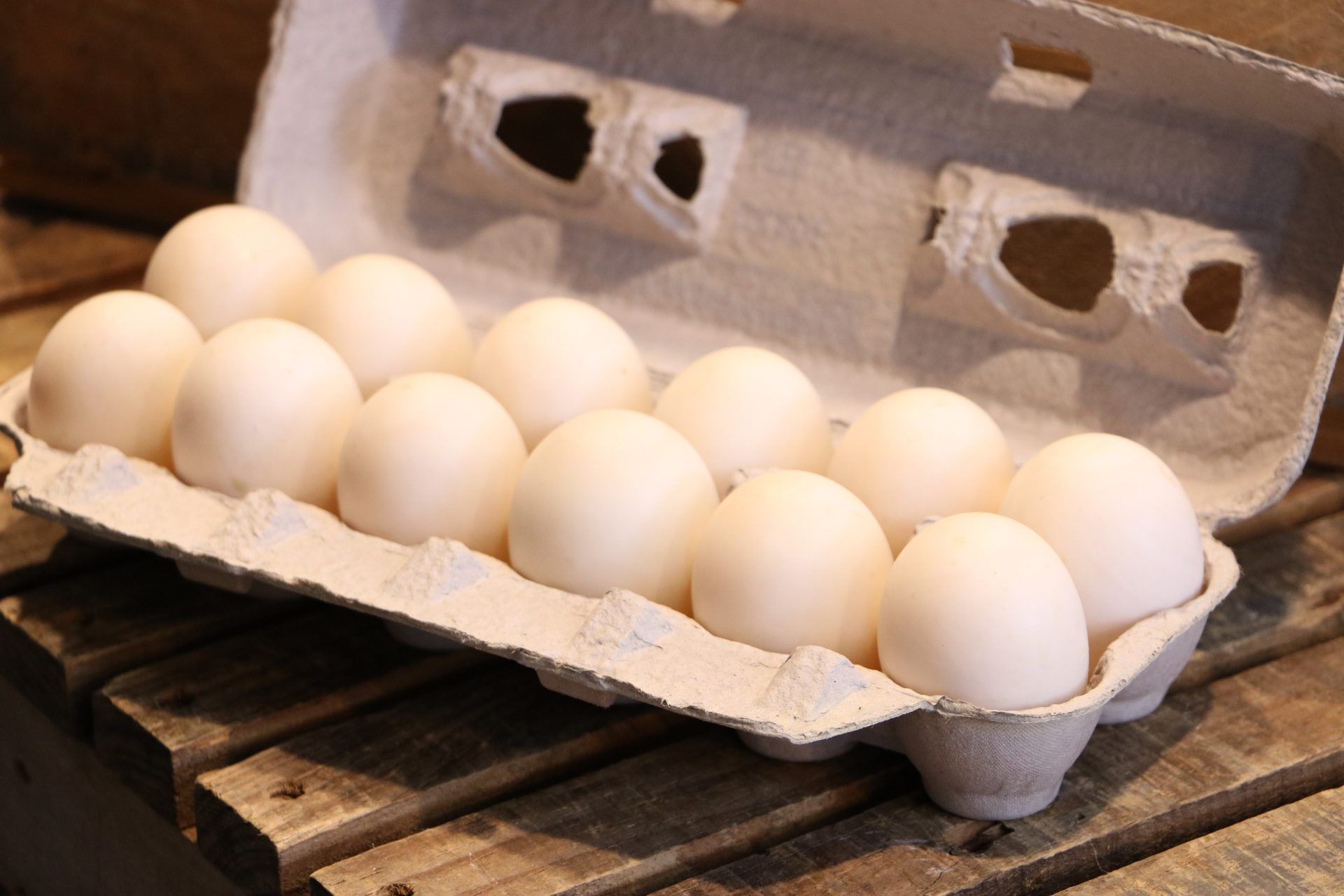 Duck Eggs Cartons Double Star Farms